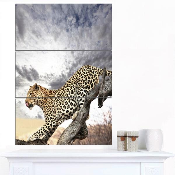 Designart 'Leopard on Tree under Cloudy Sky' African Wall Art Print