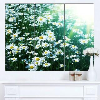 Designart 'Sunny Garden with Cute White Flowers' Large Flower Canvas Artwork