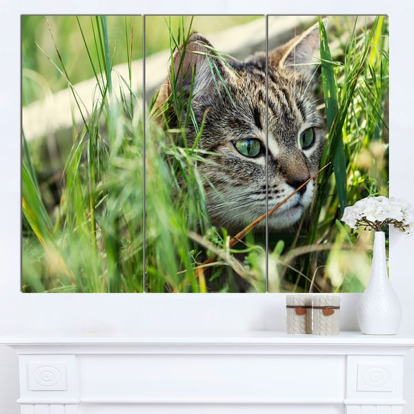 Designart 'Lovely Kitten in Grass' Animal Canvas Artwork