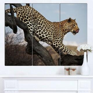 Designart 'Leopard Walking on Tree' African Canvas Artwork