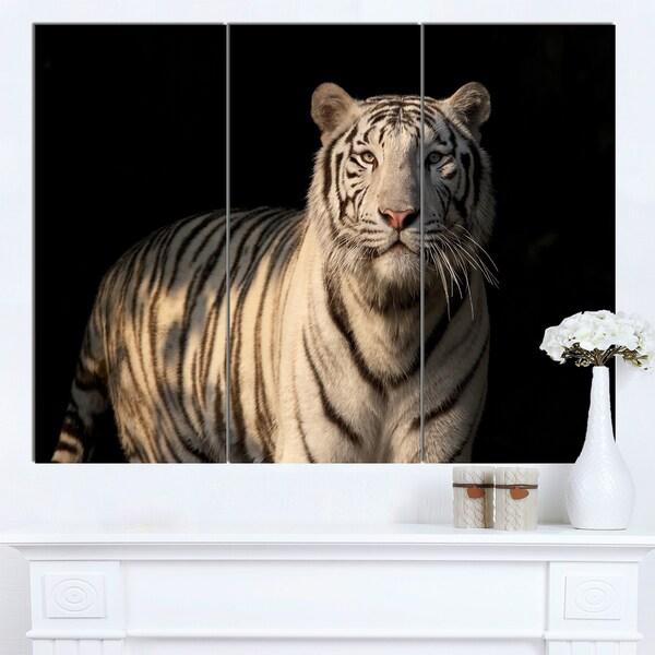 Designart 'White Bengal Tiger on Black' Animal Wall Art Print - White