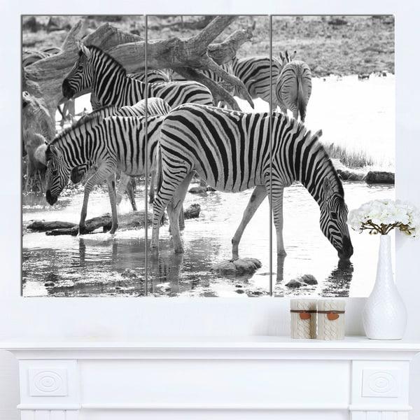 Designart 'Herd of Zebra Black and White' African Canvas Artwork - White
