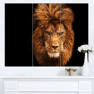 Designart 'Face of Male Lion on Black' Animal Wall Art Print