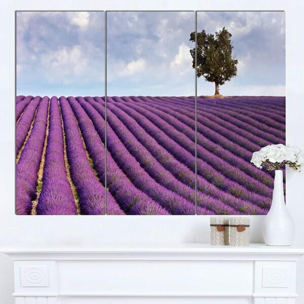 Designart 'Lone Tree in Provence Lavender Field' Landscape Canvas Wall Art