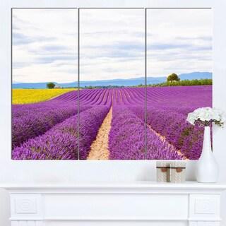 Designart 'Sunflower and Lavender Fields' Landscape Canvas Wall Art
