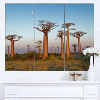 Designart 'Field of Boababs under Clam Sky' Oversized African Landscape Canvas Art