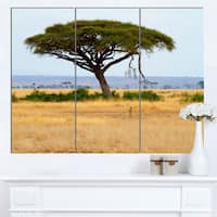 Designart 'Acadia Tree and Cheetah in Africa' Oversized African Landscape Canvas Art