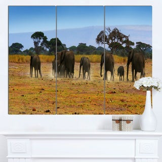 Designart 'Memory of African Wild Elephants' African Canvas Artwork