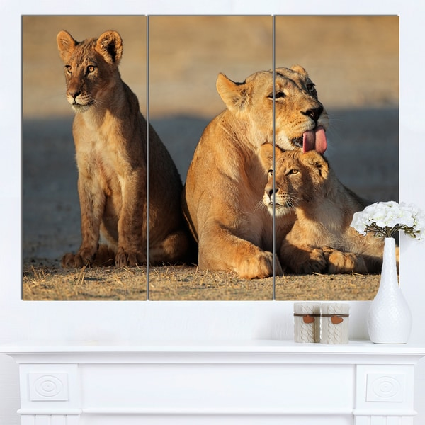 Designart 'Lioness with Cubs Taking Relax' African Canvas Artwork