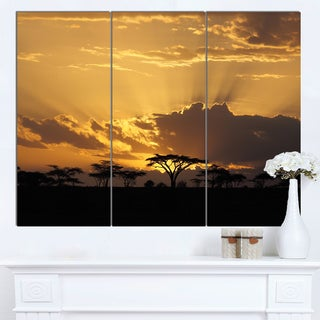 Designart 'Sunset in Africa with Acacia Tree' Extra Large Landscape Canvas Art