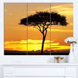 Designart 'Beautiful Sunset Through Acacia Tree' Extra Large African Landscape Canvas Art