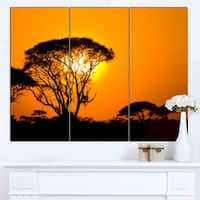 Designart 'Beautiful African Sunset in Savannah' Extra Large African Landscape Canvas Art