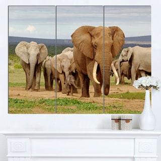 Designart 'Large Elephant Herd in Africa' African Wall Art Canvas Print