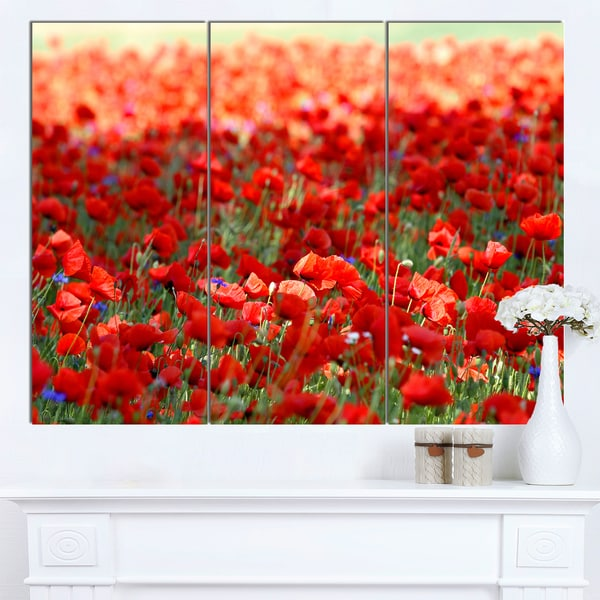 Shop Designart Thick Red Poppy Flower Field Large Flower Canvas