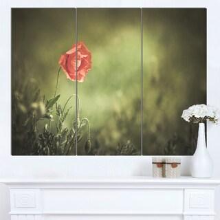 Designart 'Red Wild Poppy Flower on Green' Modern Floral Artwork on Canvas