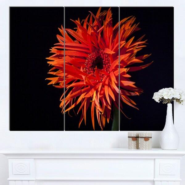 Designart 'Spider Gerbera Daisy Watercolor' Flowers Canvas Wall Artwork - multi