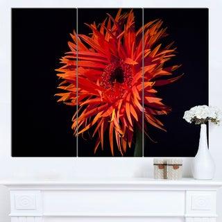 Designart 'Spider Gerbera Daisy Watercolor' Flowers Canvas Wall Artwork