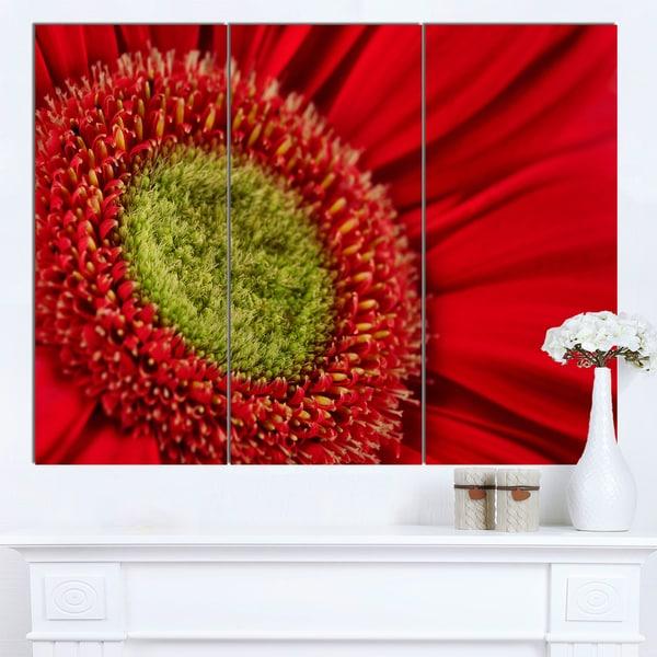Designart 'Red Daisy Gerbera Flower Close-up' Flowers Canvas Wall Artwork - Red