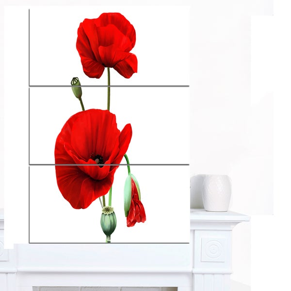 Designart 'Red Poppies on White Background' Floral Canvas Artwork Print