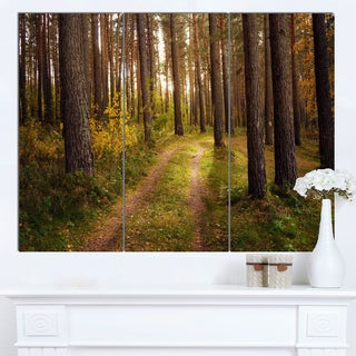 Designart 'Road through Thick Fall Forest' Modern Forest Canvas Art