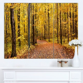 Designart 'Bright Autumn Forest Panorama' Modern Forest Canvas Art