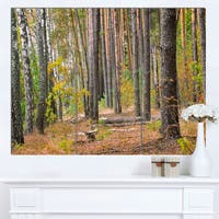 Designart 'Green Fall Forest with Thick Woods' Modern Forest Canvas Art - Green