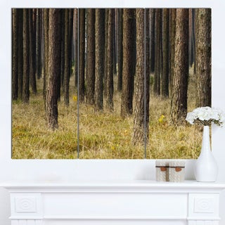 Designart 'Dark Fall Forest with Green Grass' Modern Forest Canvas Art
