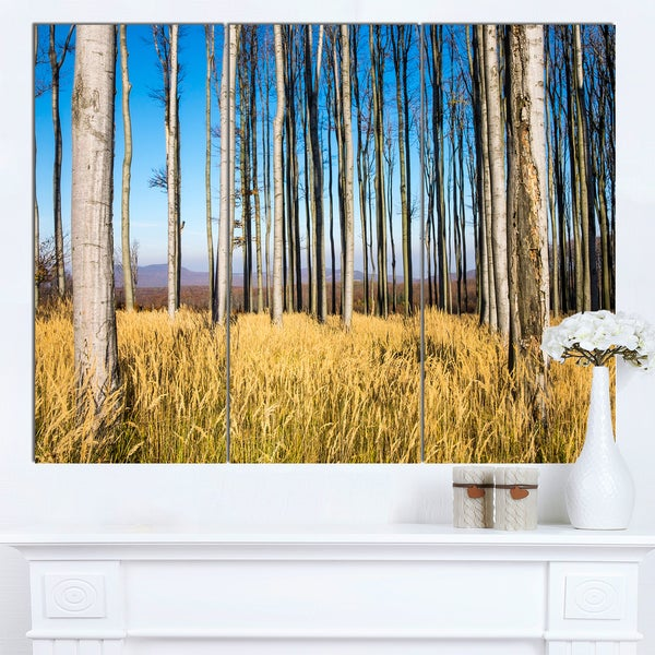 Designart 'Clear Sky and Bush in Thick Forest' Modern Forest Canvas Art