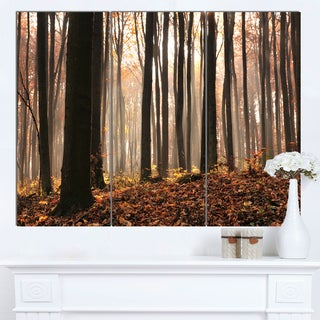 Designart 'Dark Thick Woods in Fall Forest' Modern Forest Canvas Art