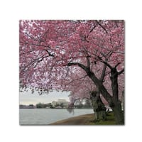 CATeyes 'Tidal Basin Blossoms' Canvas Art