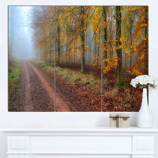 Designart 'Raising Sun in Fall Forest Panorama' Large Forest Canvas Art