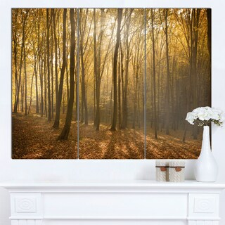 Designart 'Thick Green Fall Forest with Fog' Large Forest Canvas Art