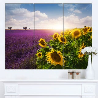 Designart 'Lavender and Sunflower Fields' Floral Canvas Artwork Print