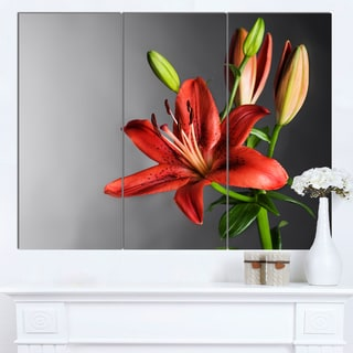 Designart 'Cute Red Lily Flower over Black' Flowers Canvas Wall Artwork