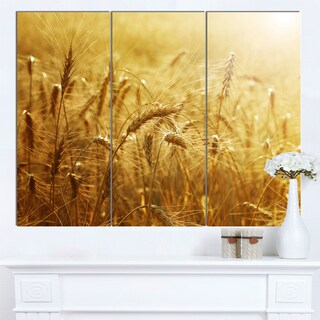 Designart 'Golden Wheat Field' Landscape Wall Art Print Canvas