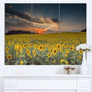 Designart 'Sunflower Sunset with Cloudy Sky' Landscape Wall Art Print Canvas