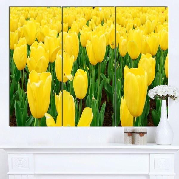 Designart 'Bright Tulip Flowers in Garden' Flower Canvas Print Artwork