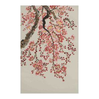 Cherry Blossoms I Canvas by Jamaliah Morais