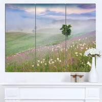 Designart 'Foggy Summer Morning in Mountains' Large Landscape Art Canvas Print