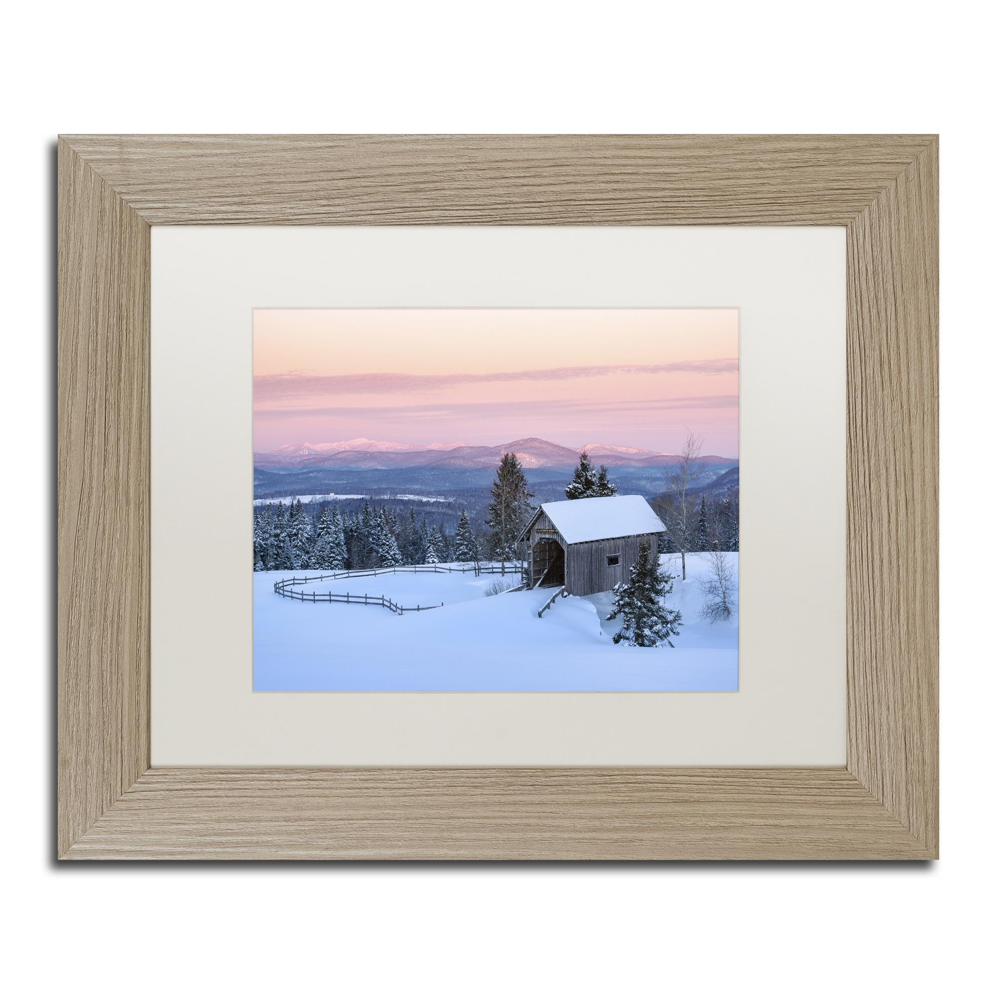 Michael Blanchette Photography Light In The Forest Ornate Framed Art Overstock 13544007