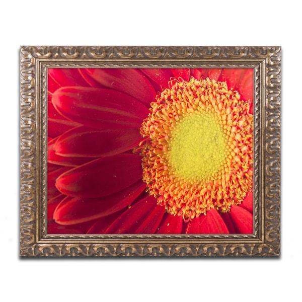 Jenny Newland 'Sweet Ones' Ornate Framed Art - Red