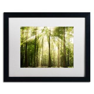 PIPA Fine Art 'Sunrays Through Treetops' Matted Framed Art