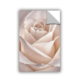 ArtAppealz Sagebrush Cora Niele's 'Classic Rose' Removable Wall Art Mural
