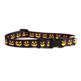 Yellow Dog Jack O'Lantern Pet Standard Collar and Lead Set