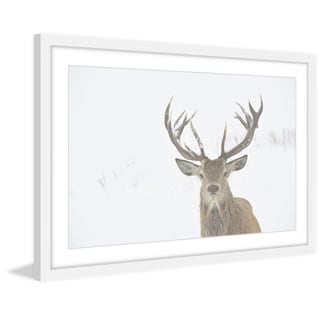 Marmont Hill - 'Buck Stare' Framed Painting Print