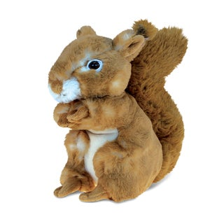 Puzzled Squirrel Multicolor 8-inch Plush Animal