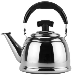 Stainless Steel 1-liter Tea Kettle with Filter