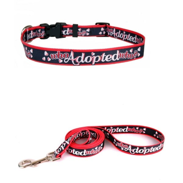Yellow Dog Who Adopted Who Pet Standard Collar and Lead Set