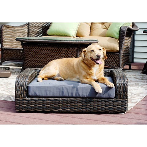 Rattan Pet Sofa Bed - Indoor/Outdoor - N/A