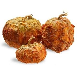 National Tree Company 3-piece Pumpkin Decor Set